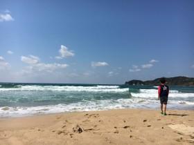 琴ヶ浜写真